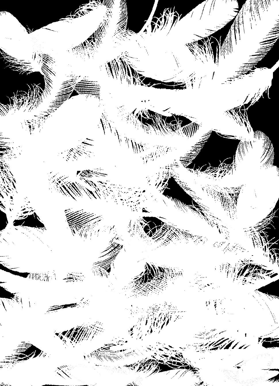 ヴァンモアフッター4
